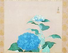 掛軸:伊東万耀 紫陽花図