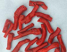 血赤珊瑚 ルース