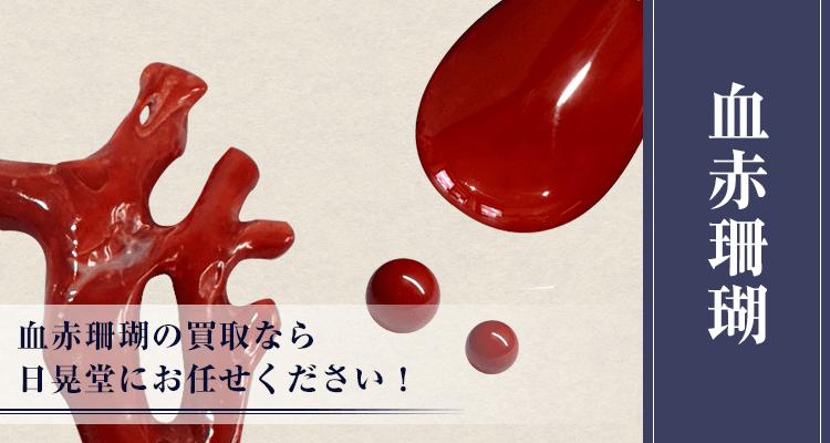 血赤珊瑚買取