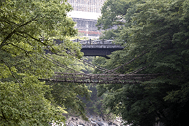 徳島県イメージ